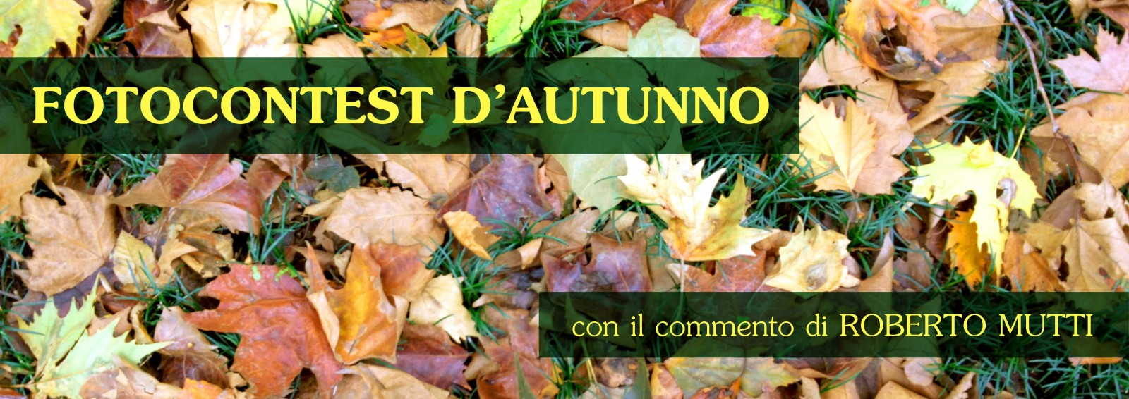Fotocontest autunno 2